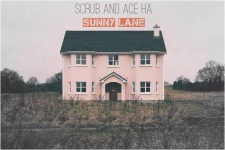 scrub ace sunny